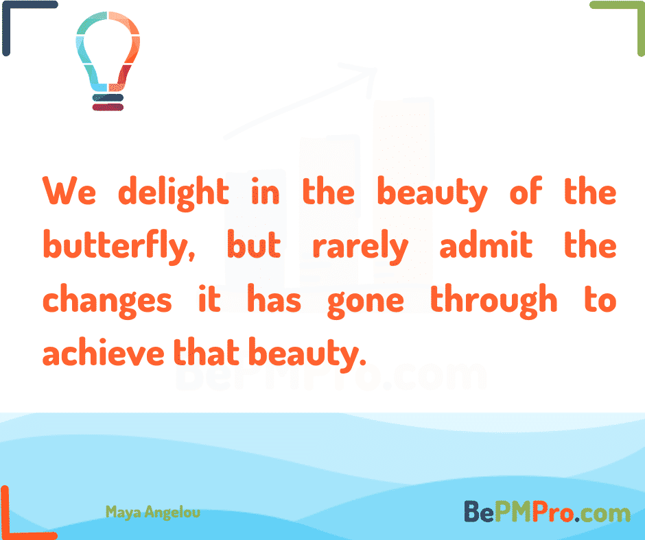 We delight in the beauty of the butterfly, but rarely admit the changes it has gone through to achieve that beauty. Maya Angelou – I4OpG3SOqtZi5gl7BtWm